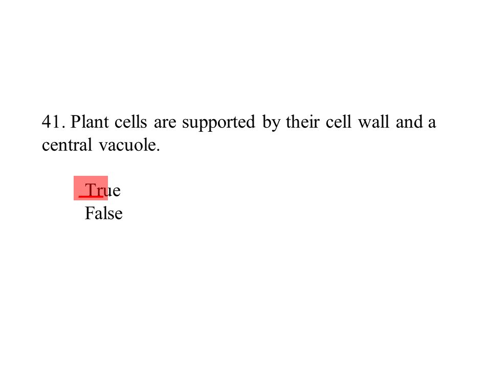 41. Plant cells are supported by their cell wall and a central vacuole