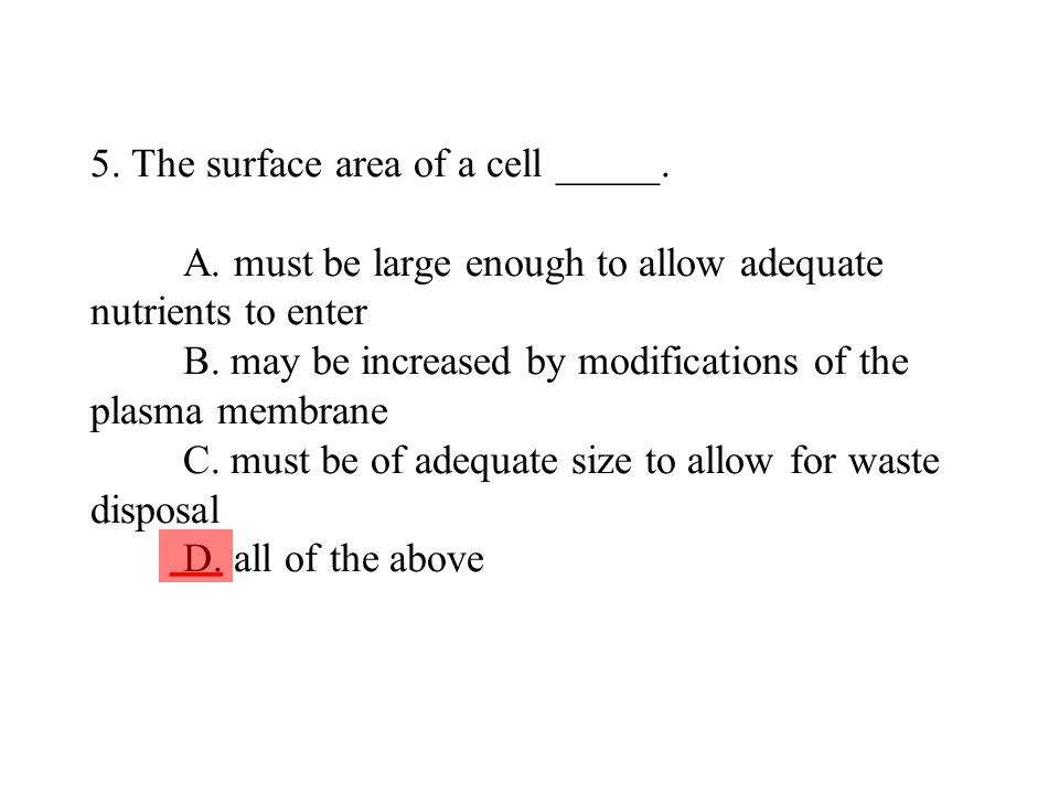 5. The surface area of a cell _____. A