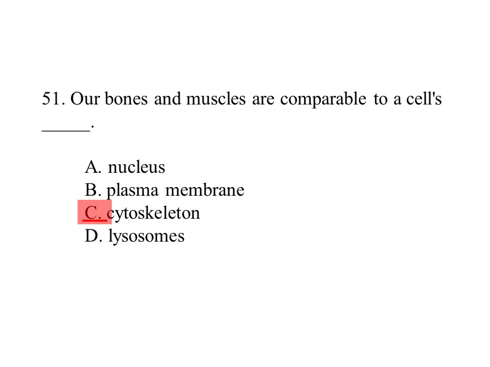 51. Our bones and muscles are comparable to a cell s _____. A