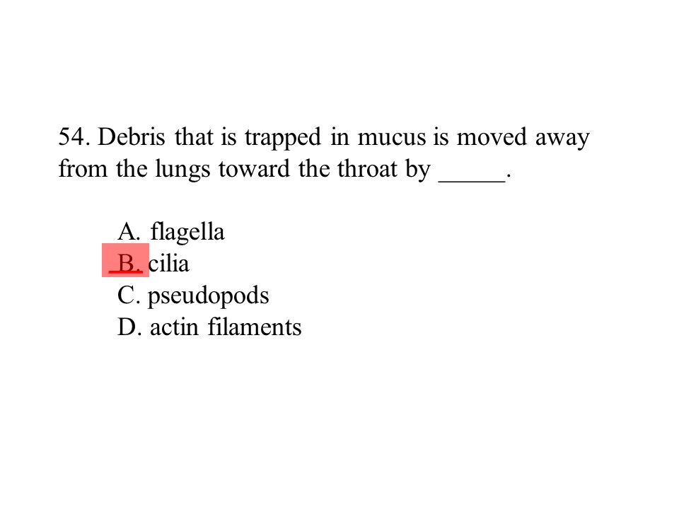 54. Debris that is trapped in mucus is moved away from the lungs toward the throat by _____. A. flagella B. cilia C. pseudopods D. actin filaments
