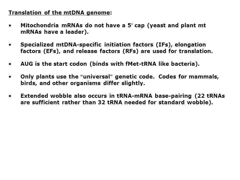 Translation of the mtDNA genome: