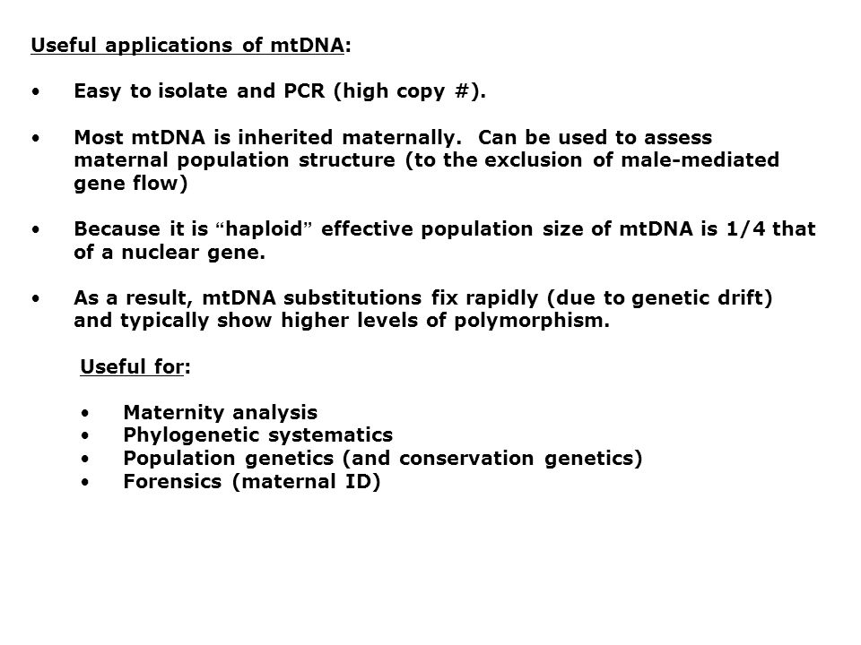 Useful applications of mtDNA: