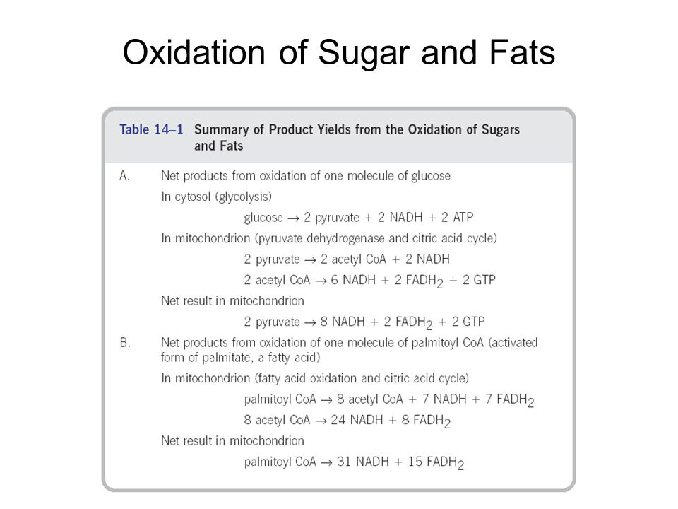 Oxidation of Sugar and Fats