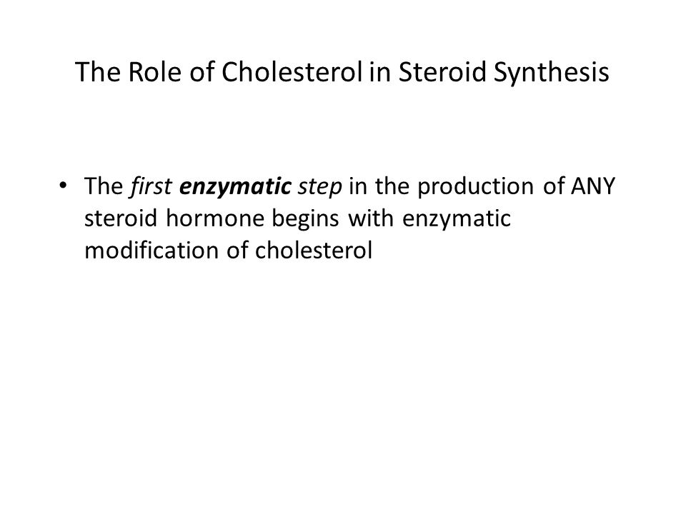 The Role of Cholesterol in Steroid Synthesis