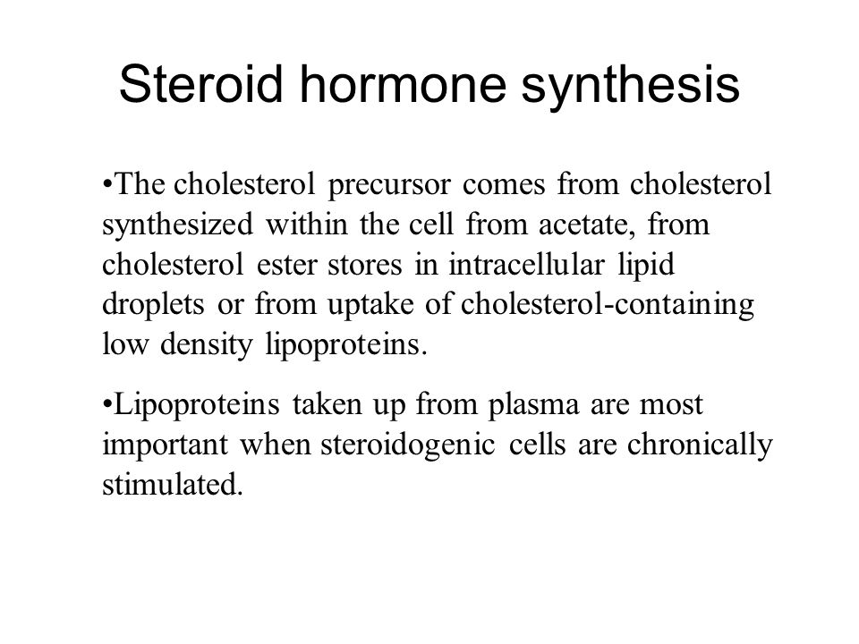 steroid sythesis