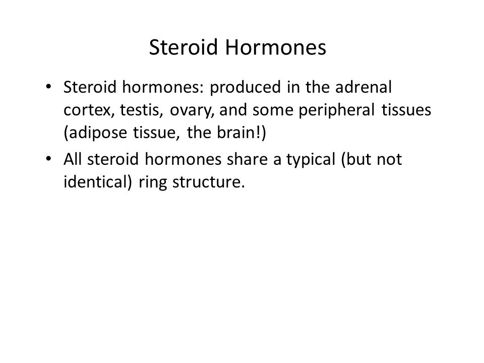 Steroid Hormones Steroid hormones: produced in the adrenal cortex, testis, ovary, and some peripheral tissues (adipose tissue, the brain!)