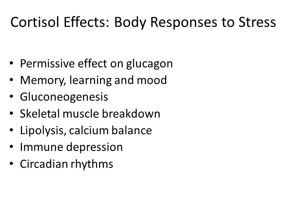 Cortisol Effects: Body Responses to Stress