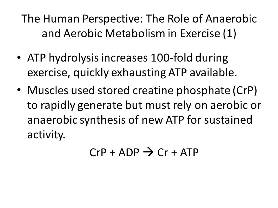 The Human Perspective: The Role of Anaerobic and Aerobic Metabolism in Exercise (1)