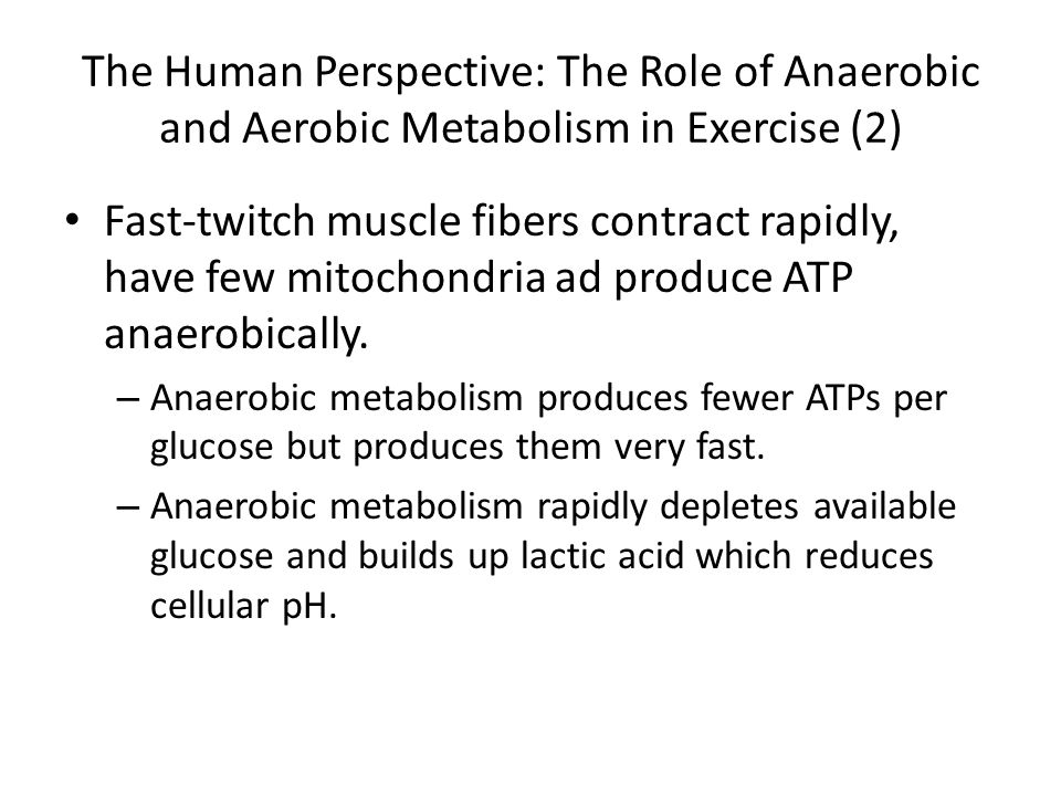 The Human Perspective: The Role of Anaerobic and Aerobic Metabolism in Exercise (2)