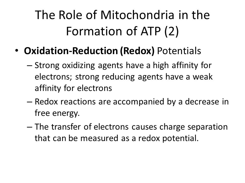 The Role of Mitochondria in the Formation of ATP (2)