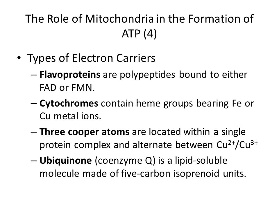 The Role of Mitochondria in the Formation of ATP (4)