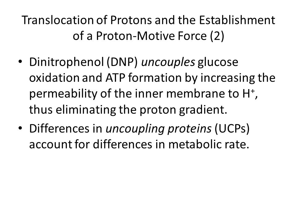 Translocation of Protons and the Establishment of a Proton-Motive Force (2)