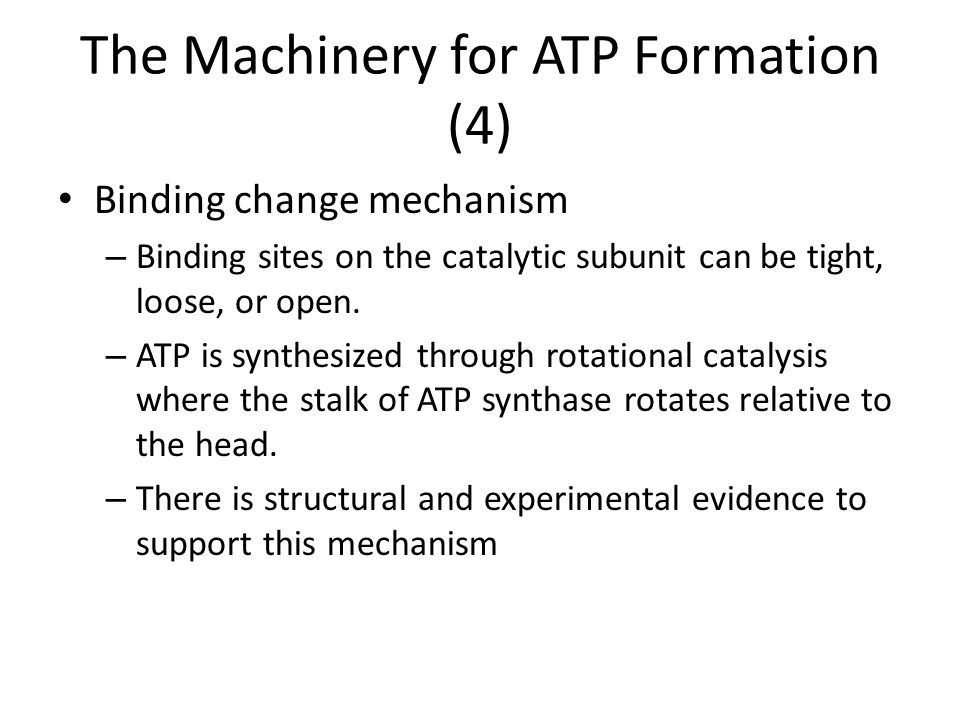 The Machinery for ATP Formation (4)