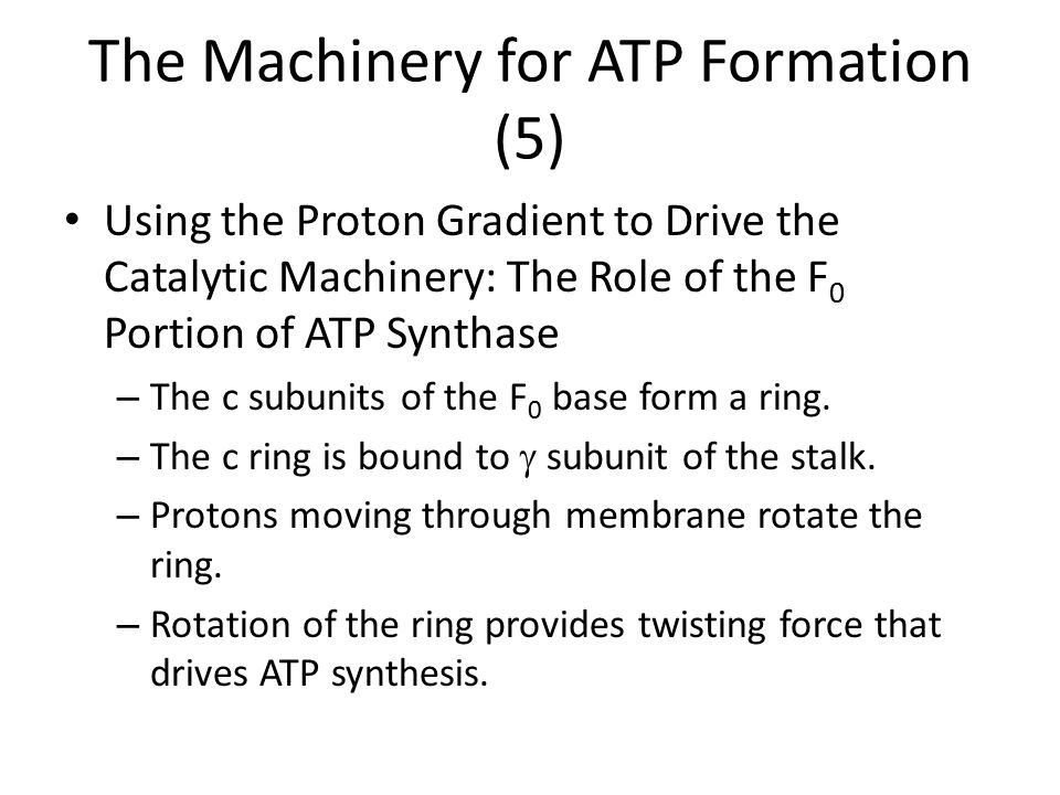 The Machinery for ATP Formation (5)