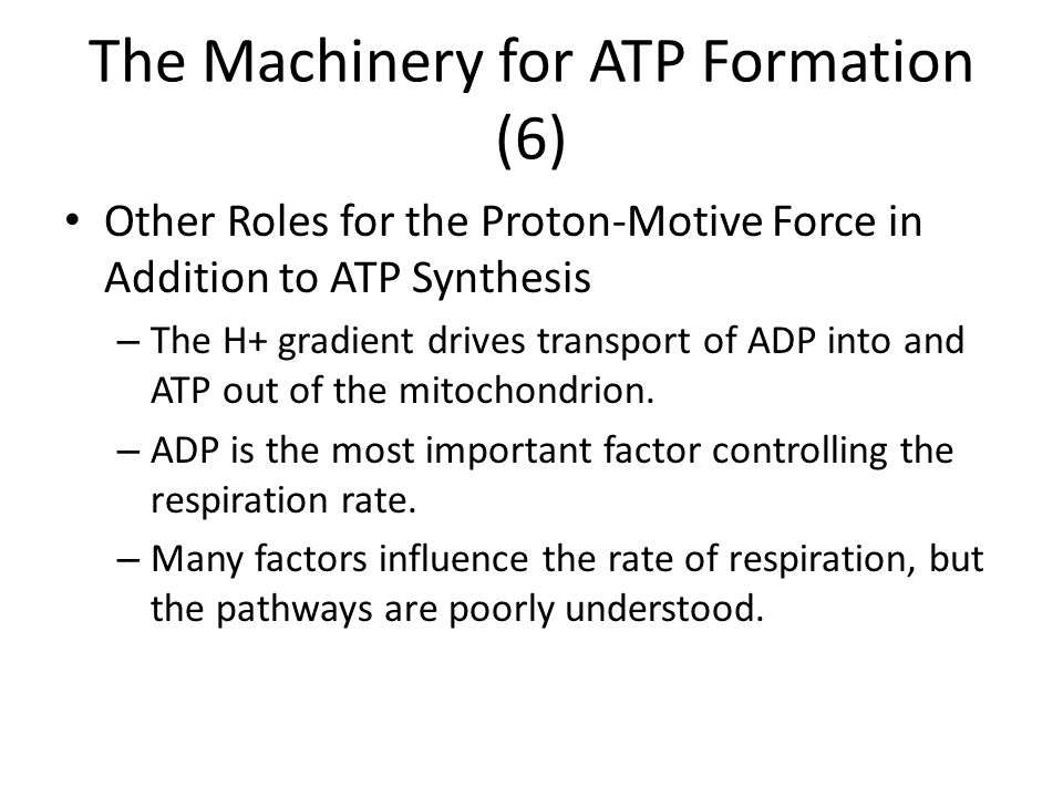 The Machinery for ATP Formation (6)