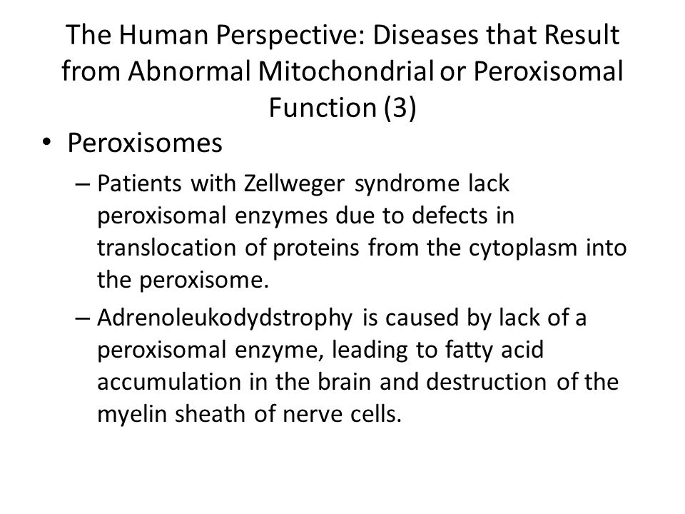 The Human Perspective: Diseases that Result from Abnormal Mitochondrial or Peroxisomal Function (3)