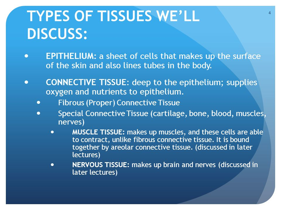 TYPES OF TISSUES WE'LL DISCUSS:
