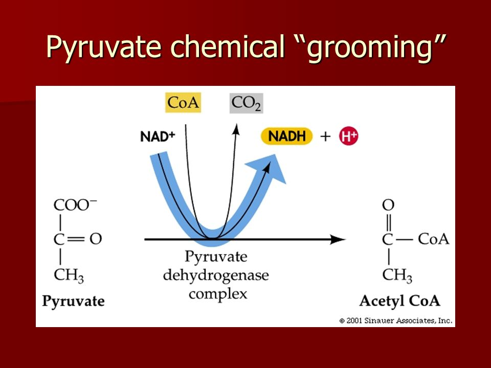 Pyruvate chemical grooming