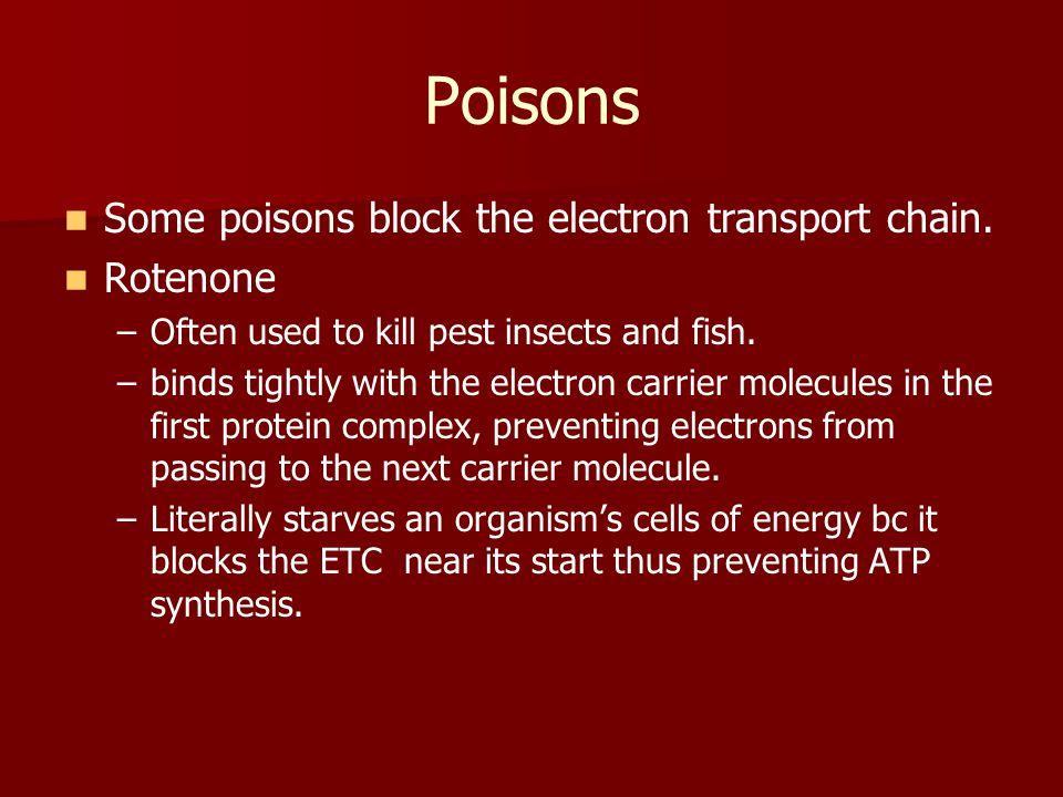 Poisons Some poisons block the electron transport chain. Rotenone
