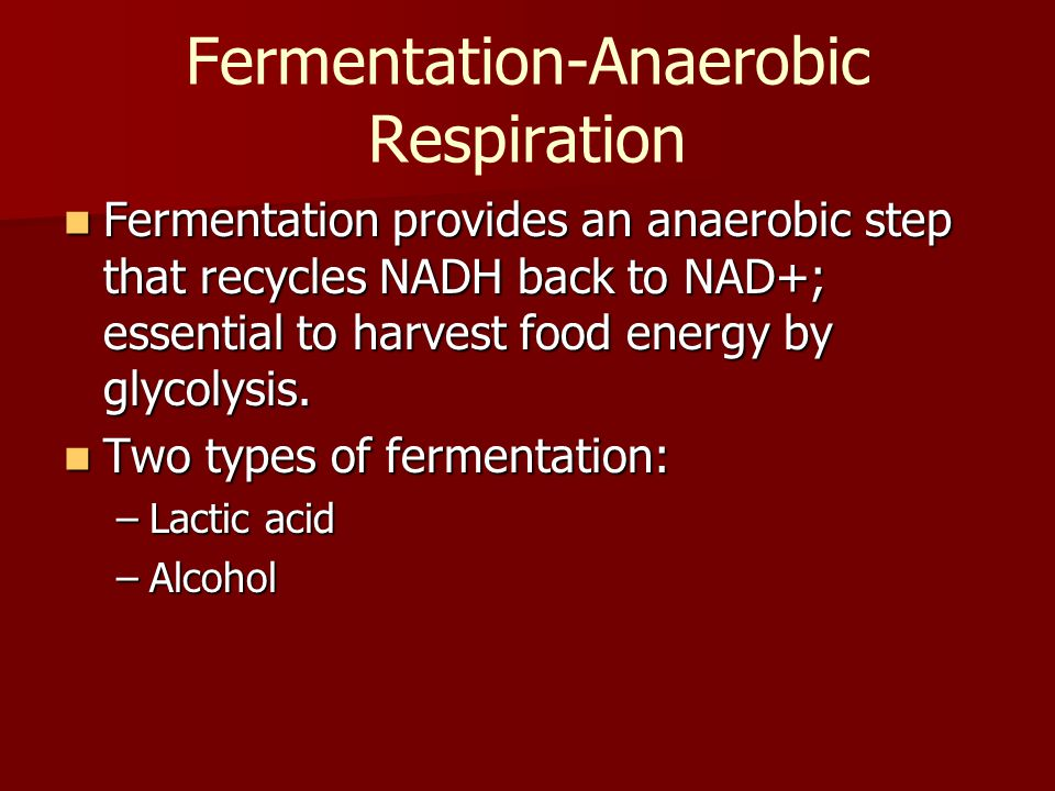 Fermentation-Anaerobic Respiration