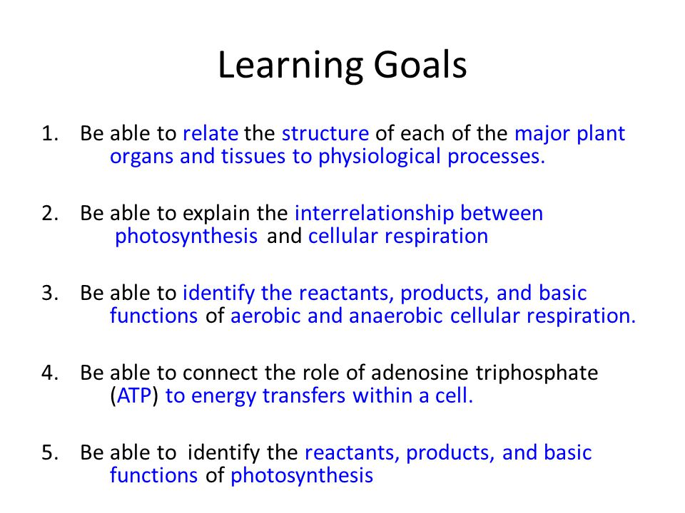 Learning Goals Be able to relate the structure of each of the major plant organs and tissues to physiological processes.