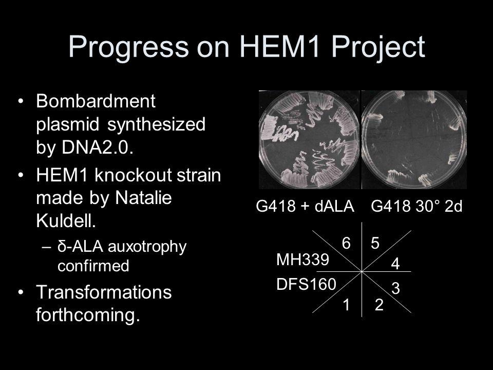 Progress on HEM1 Project