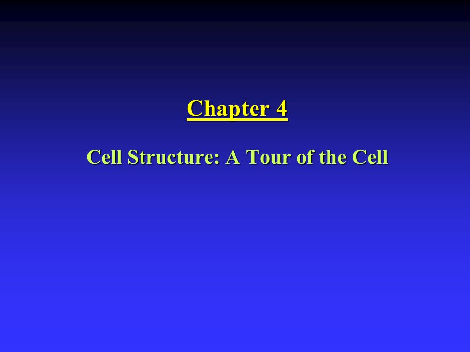 Cell Structure: A Tour of the Cell