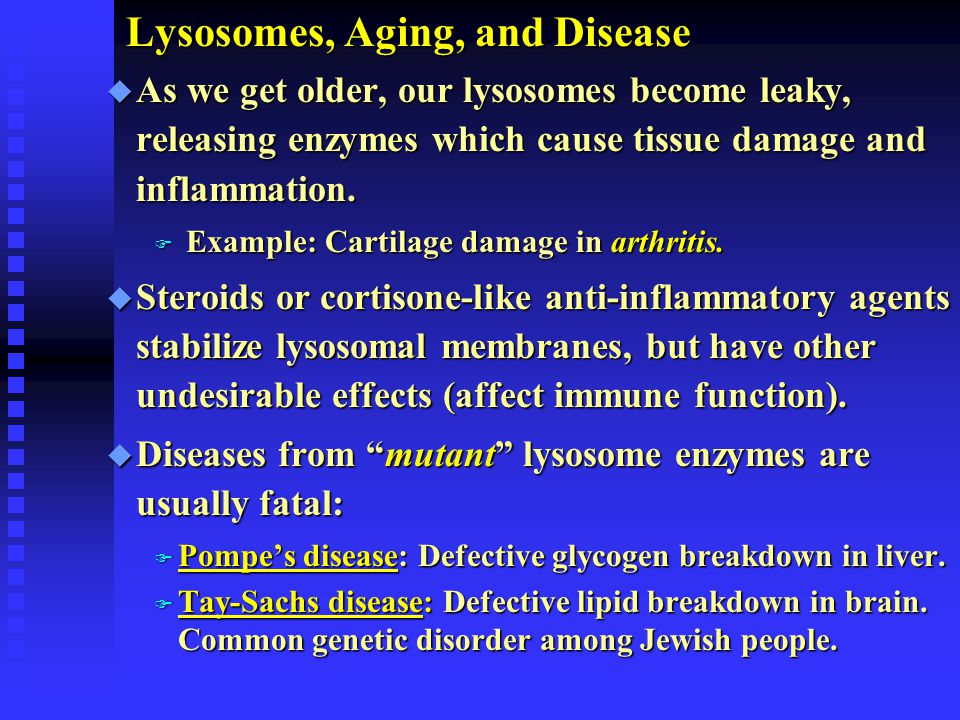 Lysosomes, Aging, and Disease