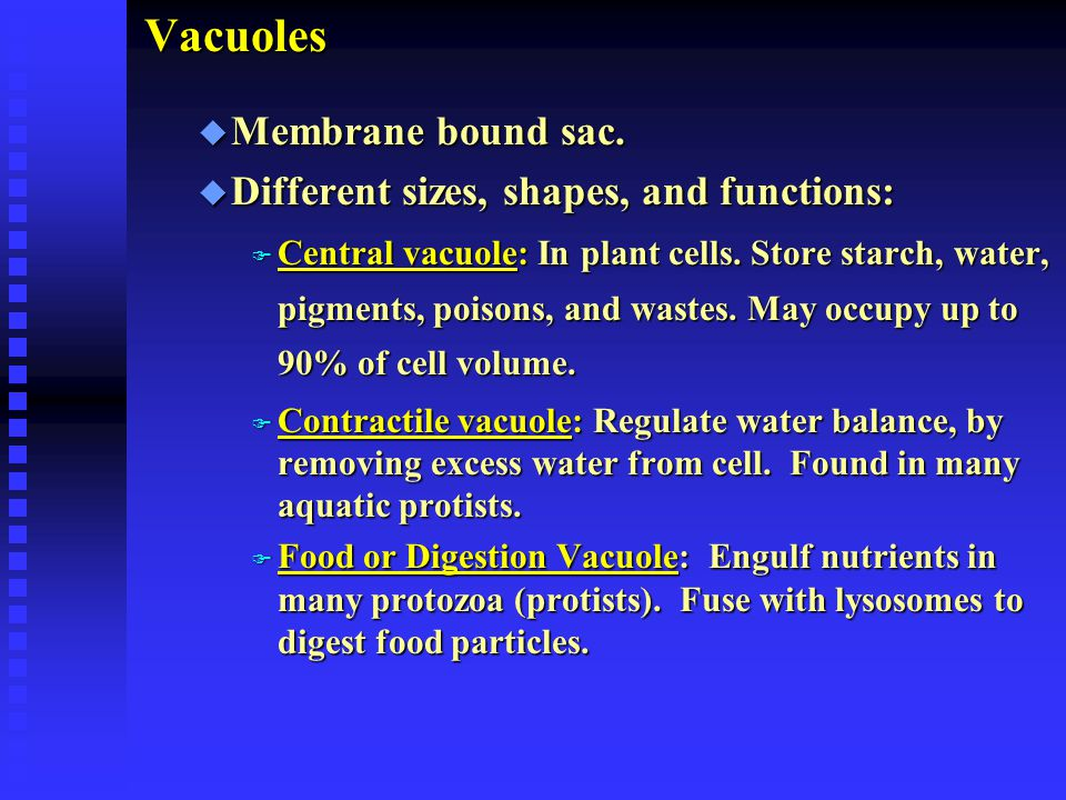Vacuoles Membrane bound sac. Different sizes, shapes, and functions: