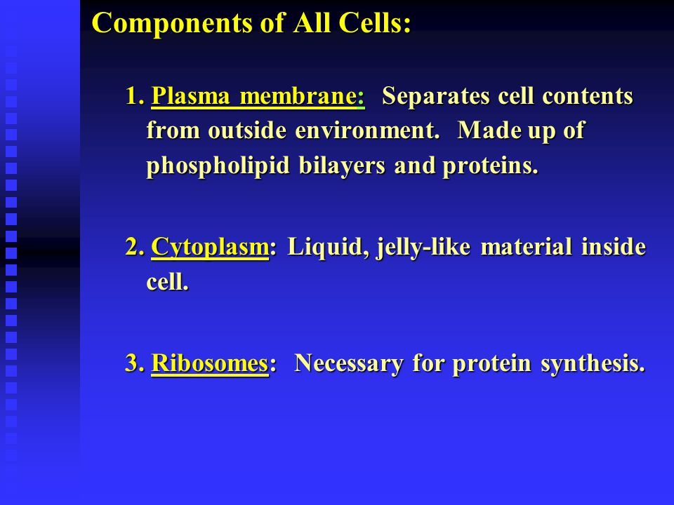 Components of All Cells: