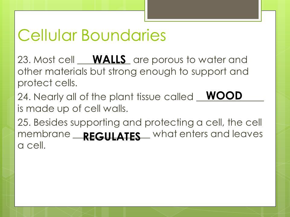 Cellular Boundaries WALLS WOOD REGULATES