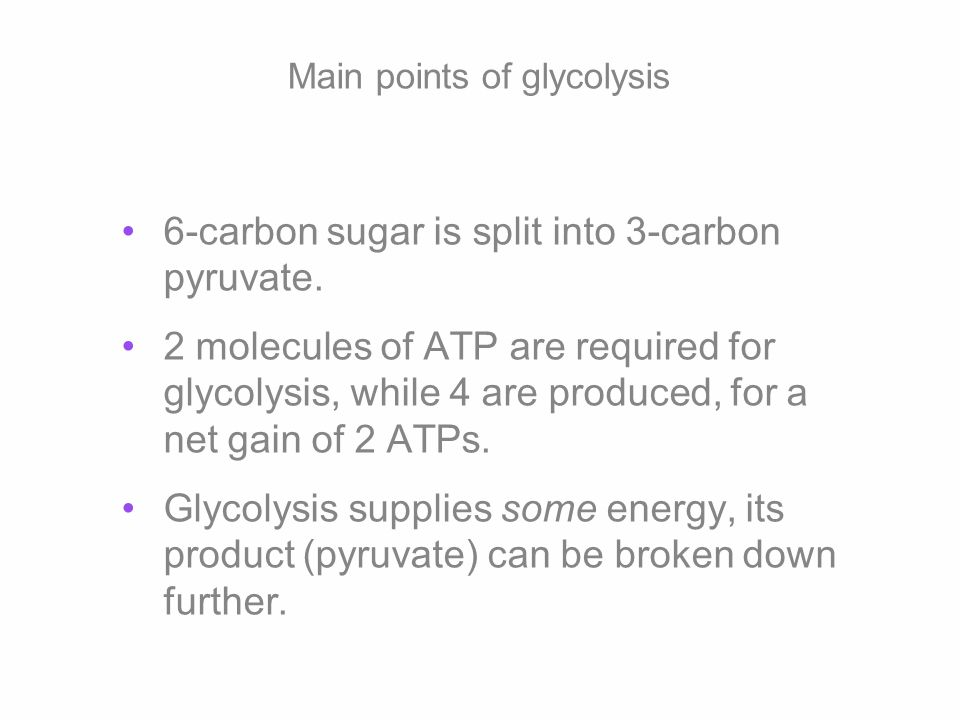 Main points of glycolysis