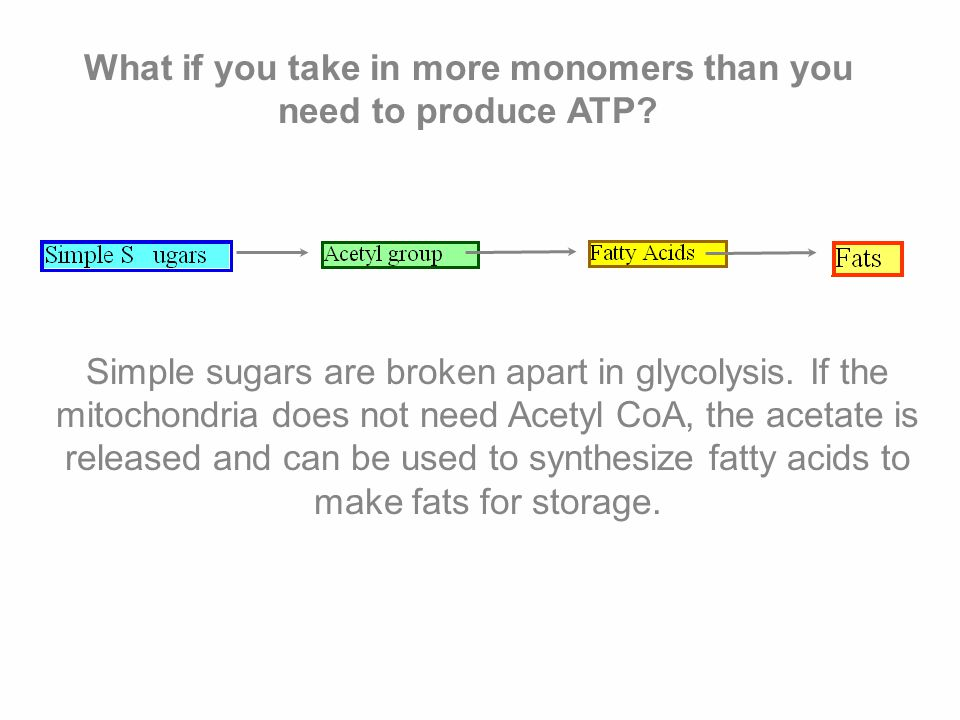 What if you take in more monomers than you need to produce ATP