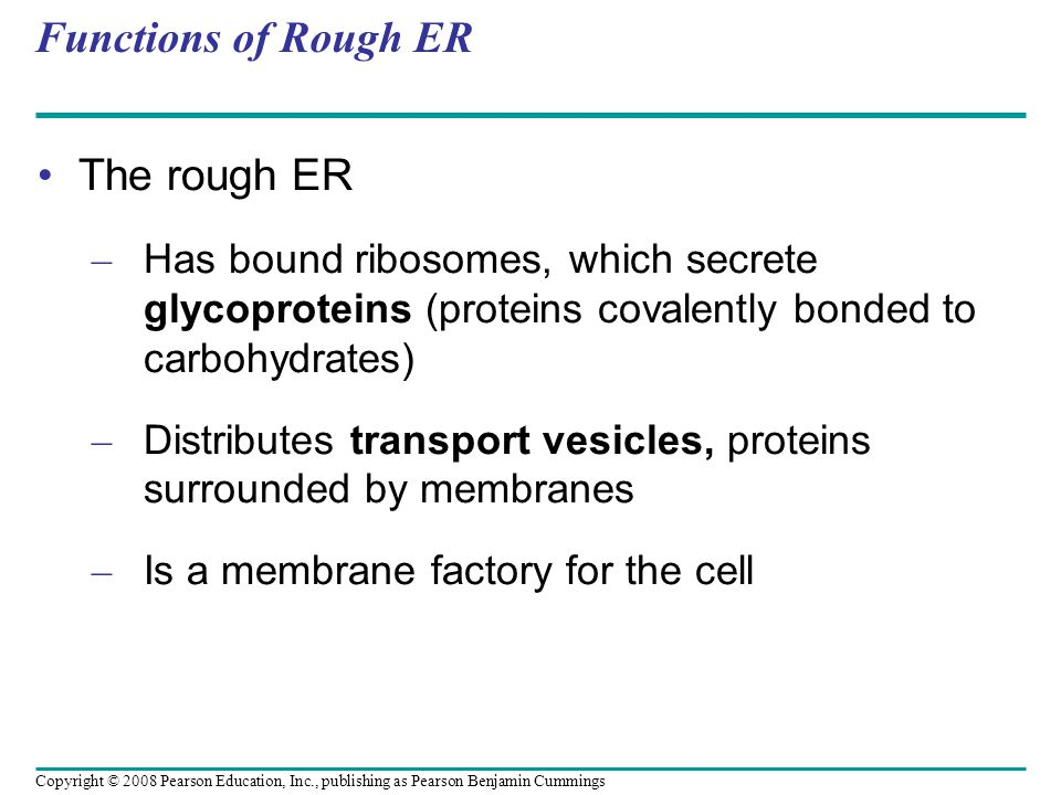 Functions of Rough ER The rough ER