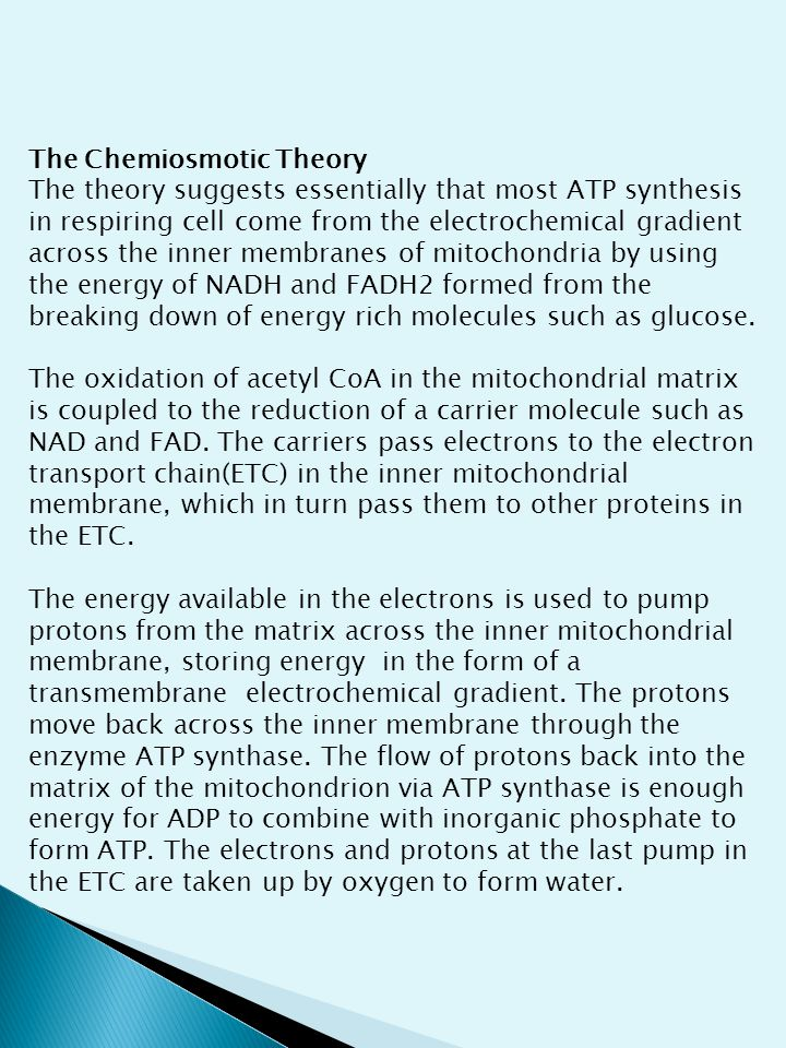 The Chemiosmotic Theory