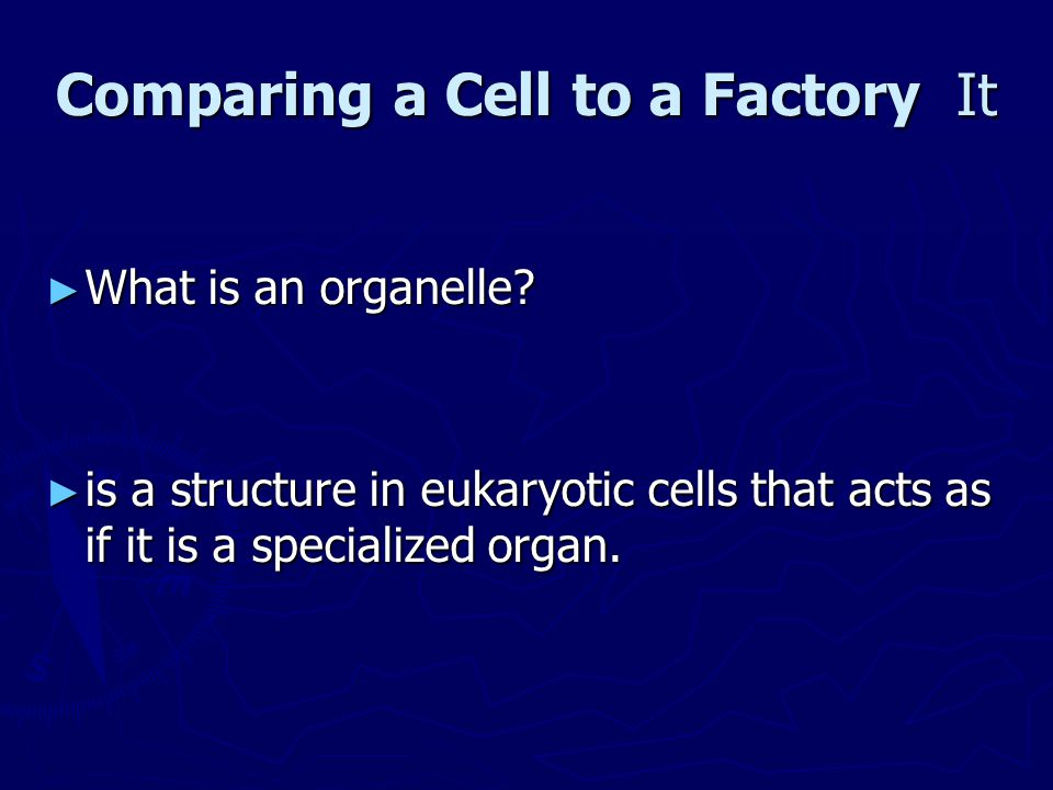 Comparing a Cell to a Factory It