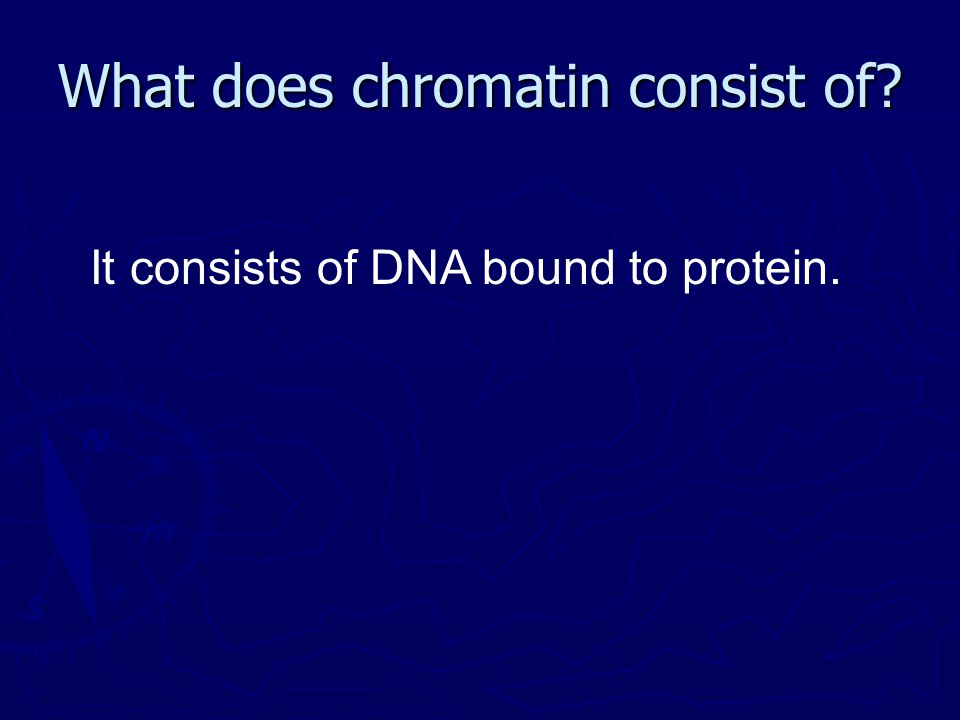 What does chromatin consist of