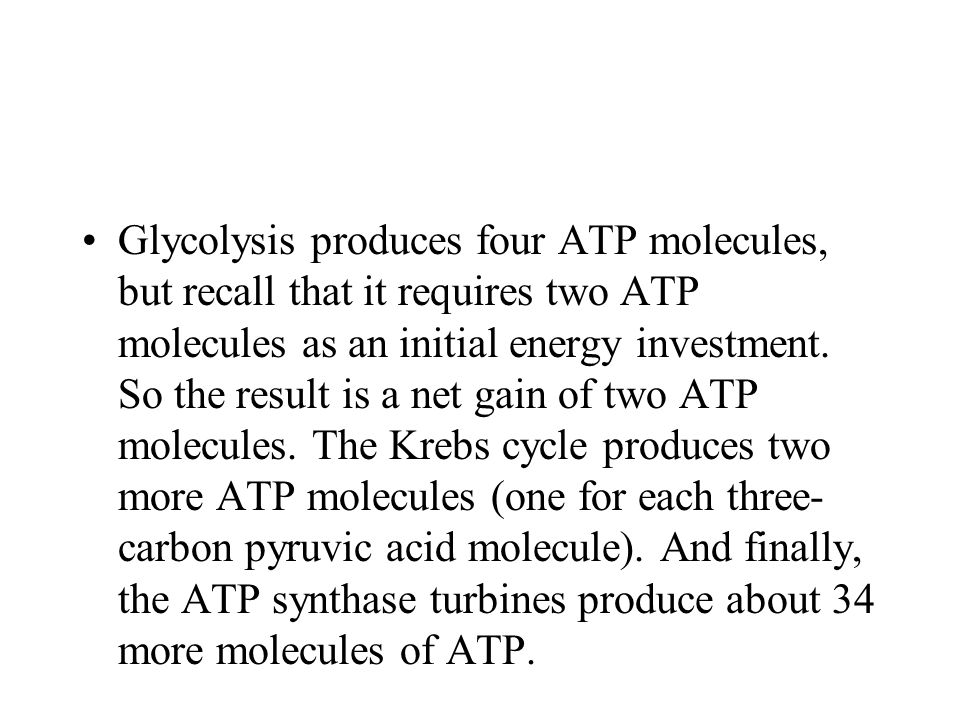 Glycolysis produces four ATP molecules, but recall that it requires two ATP molecules as an initial energy investment.