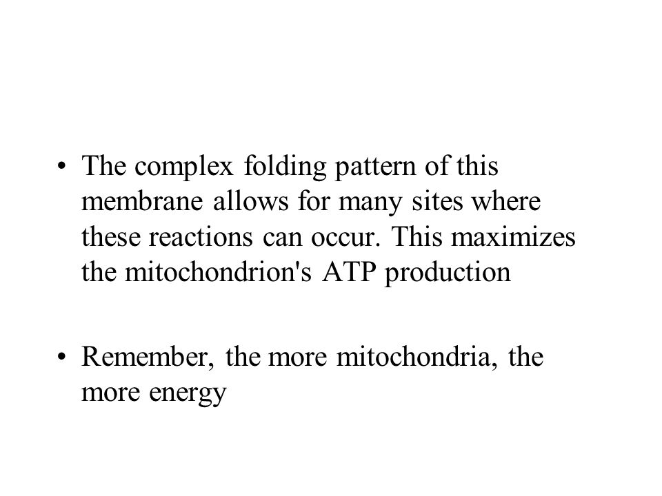 The complex folding pattern of this membrane allows for many sites where these reactions can occur. This maximizes the mitochondrion s ATP production