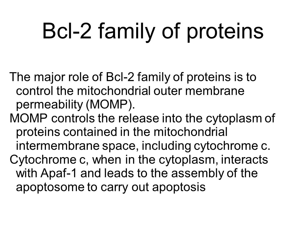 Bcl-2 family of proteins