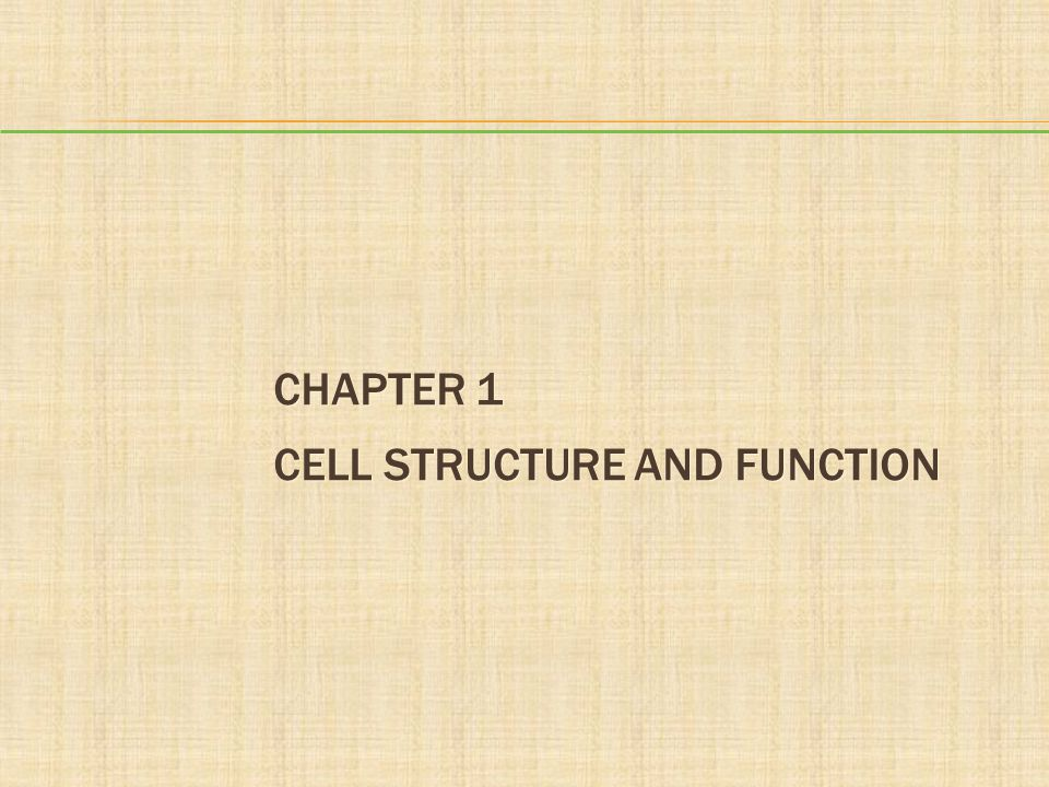 Chapter 1 Cell Structure and Function