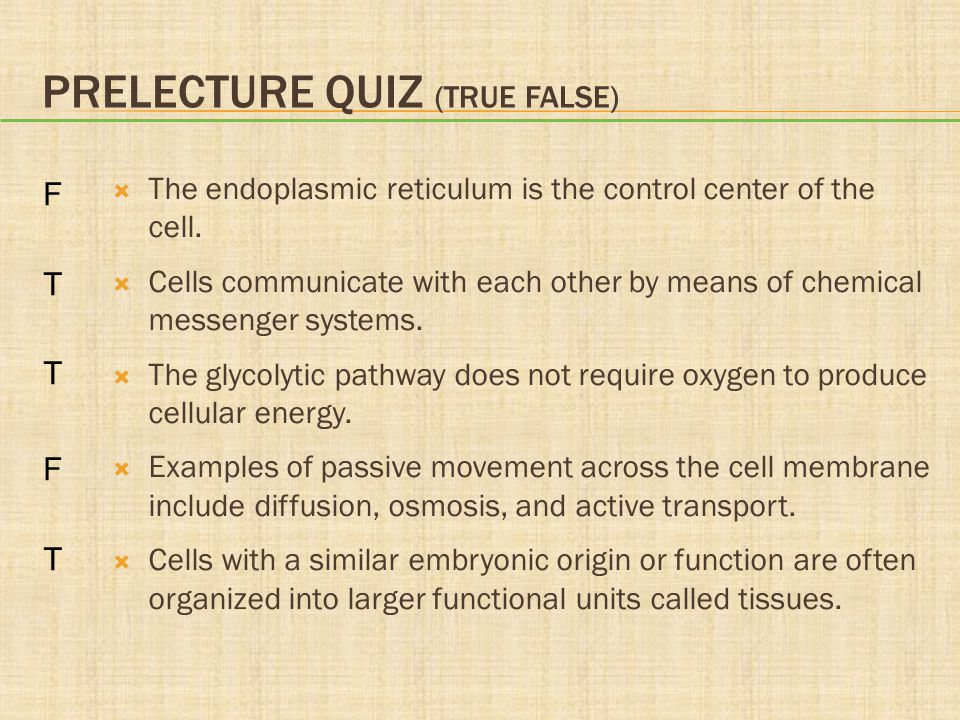 cell structure and function quiz pdf