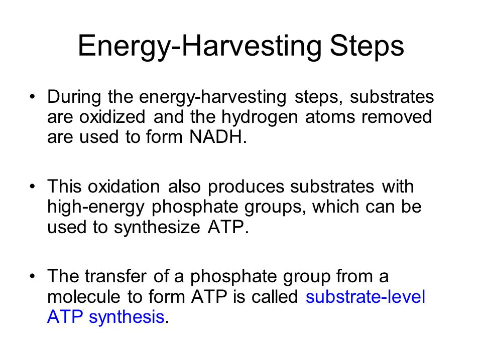 Energy-Harvesting Steps