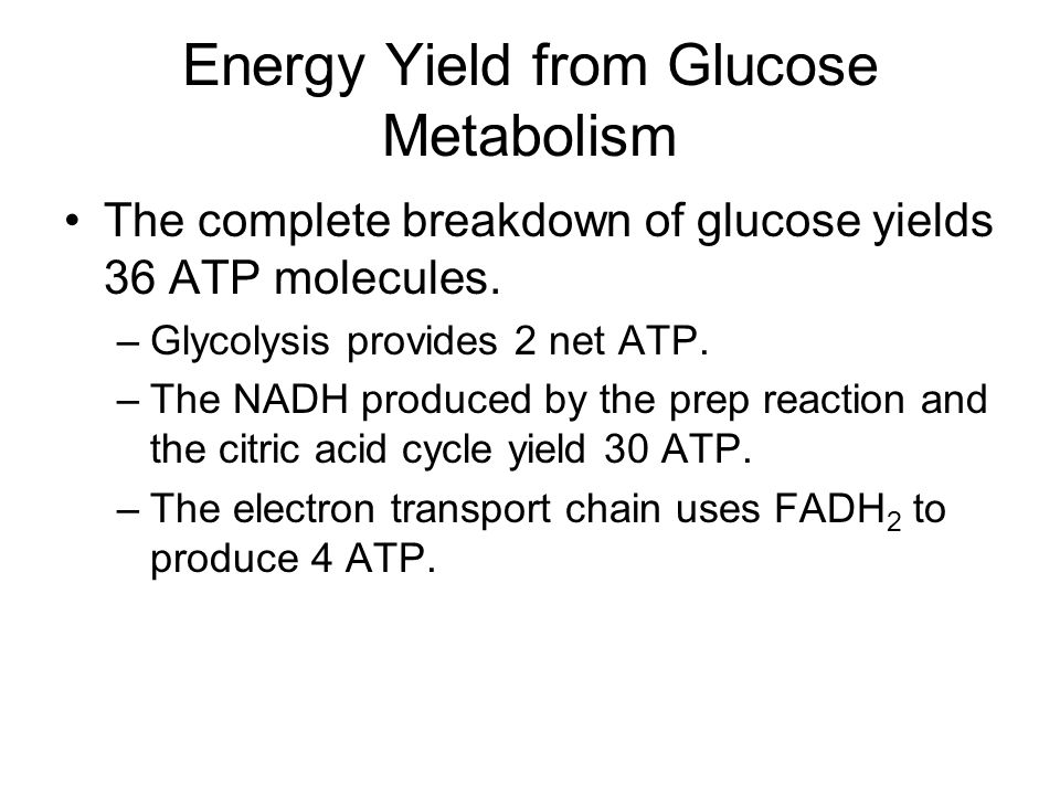 Energy Yield from Glucose Metabolism