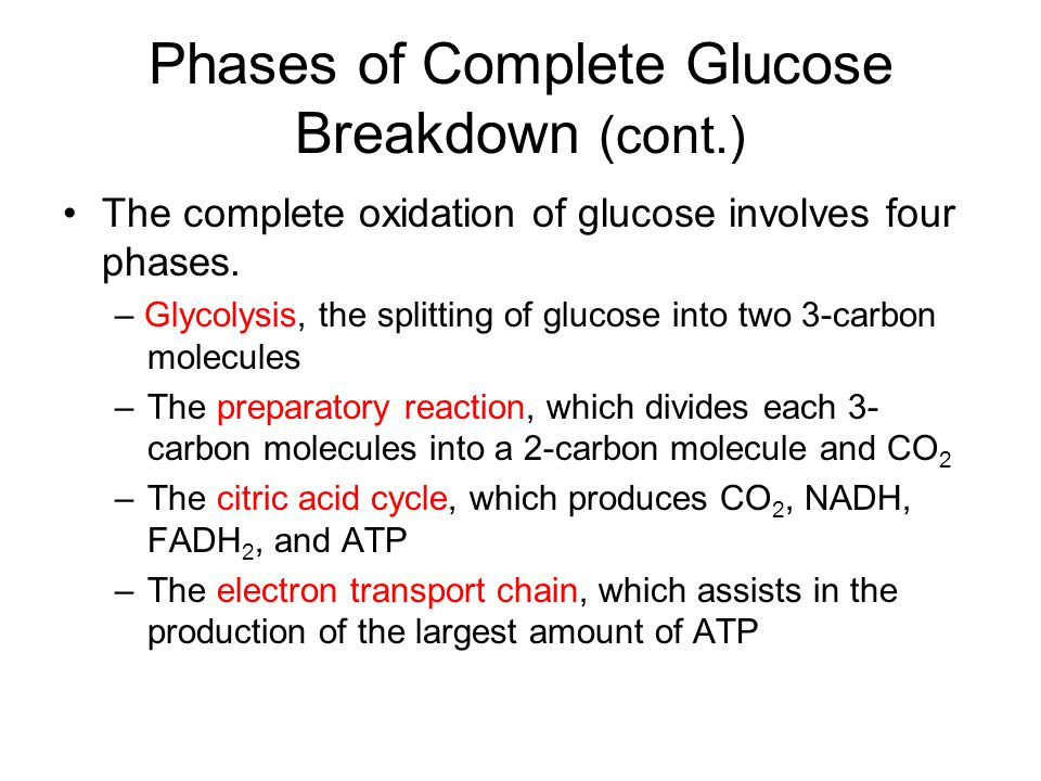 Phases of Complete Glucose Breakdown (cont.)