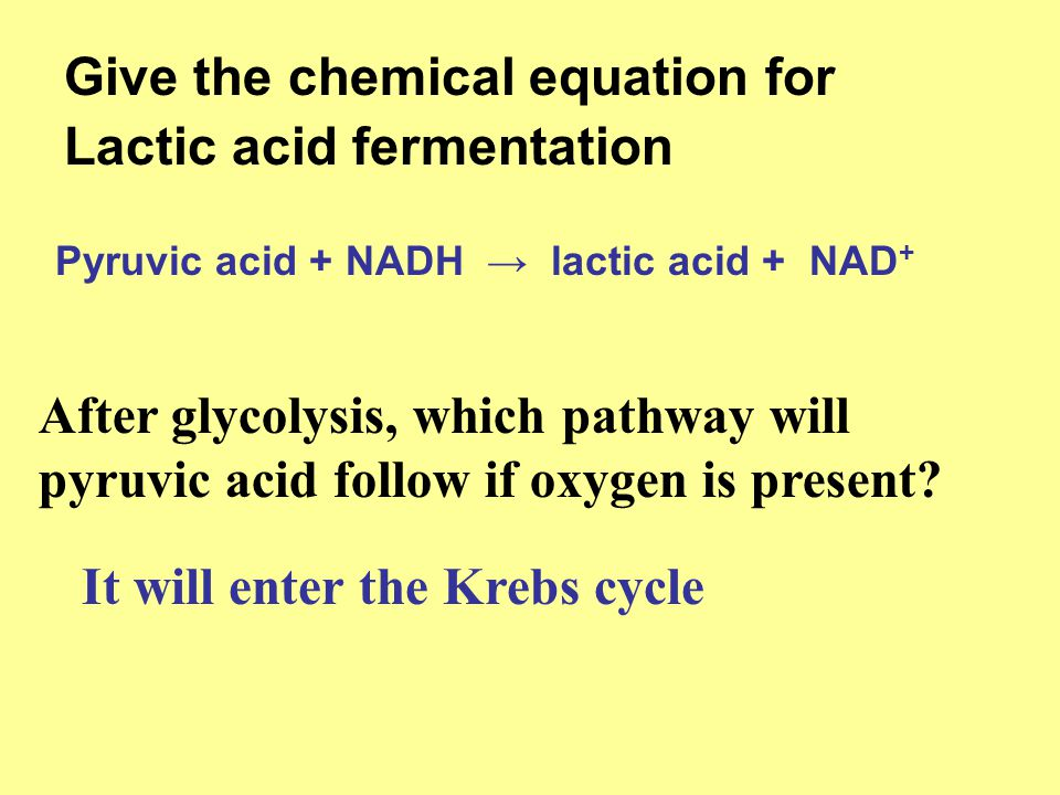 CELLULAR RESPIRATION Chapter 9 Review - ppt video online ...