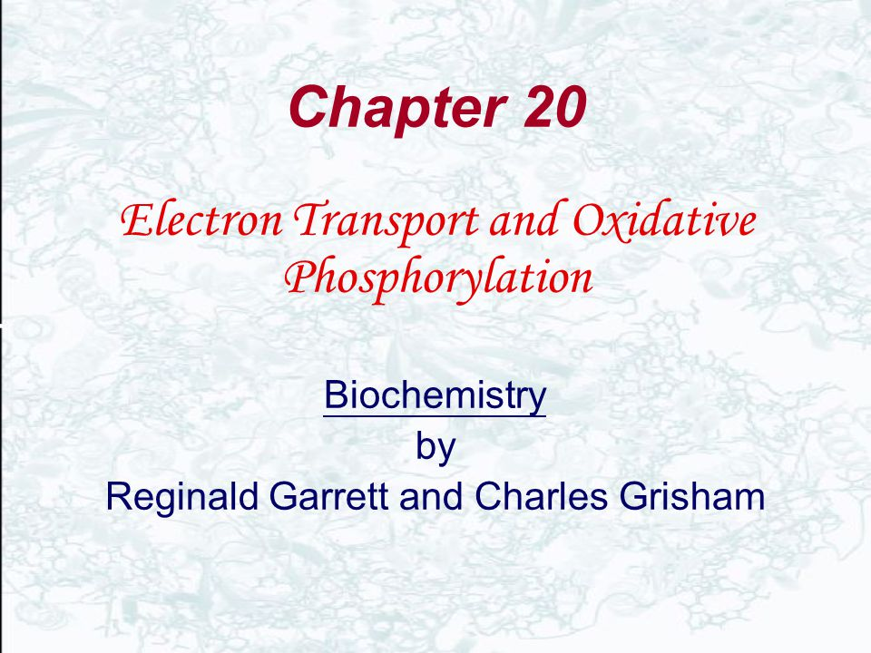 Chapter 20 Electron Transport and Oxidative Phosphorylation