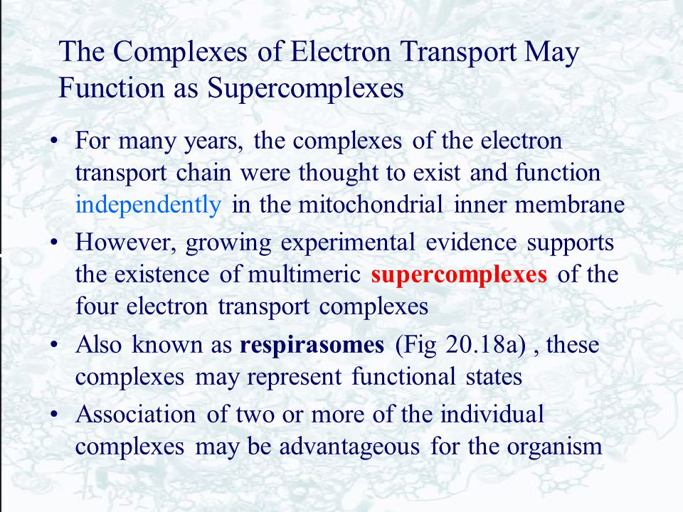 The Complexes of Electron Transport May Function as Supercomplexes