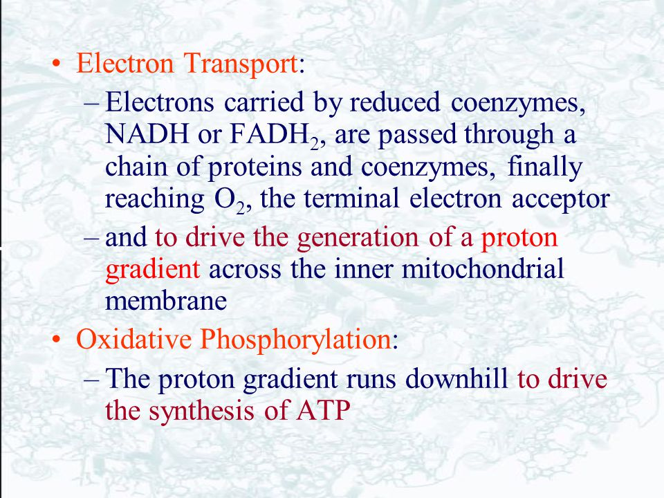 Electron Transport: