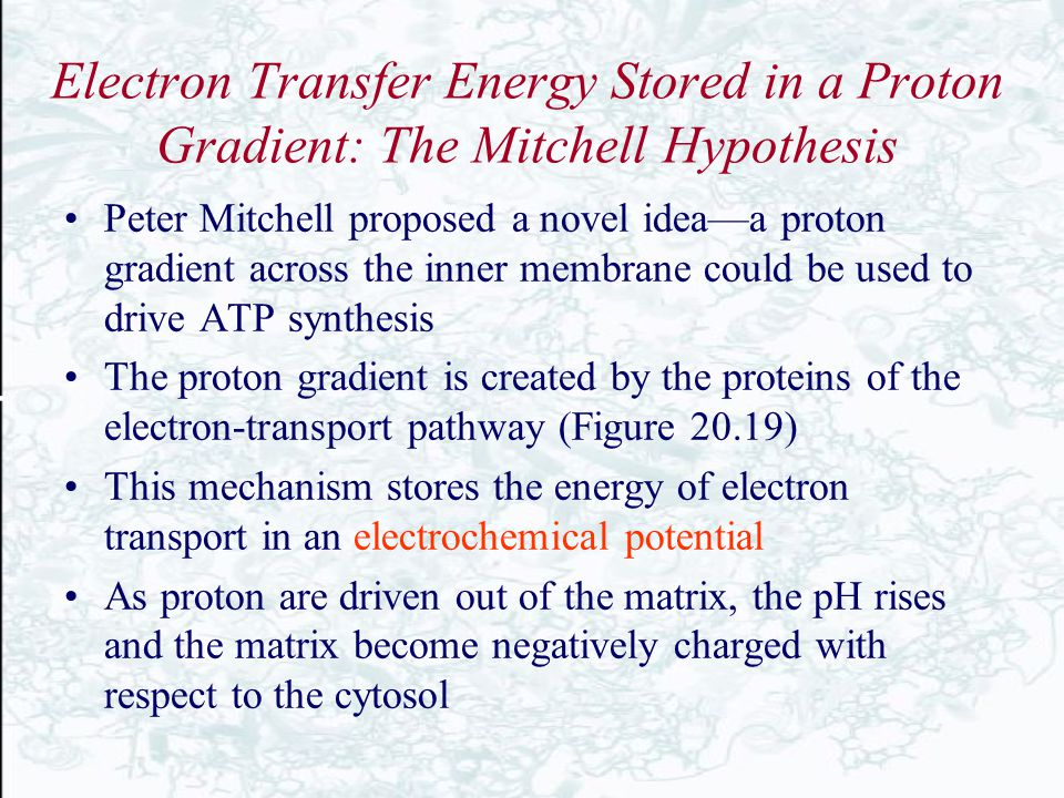 Electron Transfer Energy Stored in a Proton Gradient: The Mitchell Hypothesis